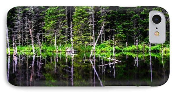 Reflections On The Pond IPhone Case