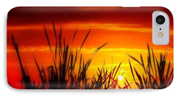 Reservoir Sunset Tall Grass IPhone Case