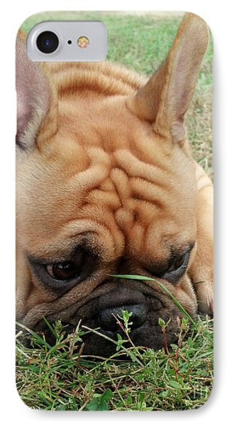 Rest- French Bulldog IPhone Case