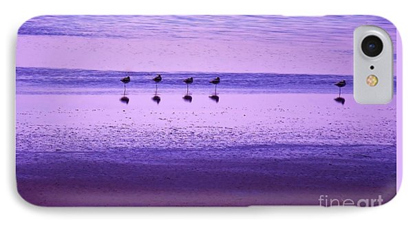 Avocets Resting In The Sunset IPhone Case