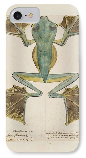 Rhacophorus Tree Frog IPhone Case