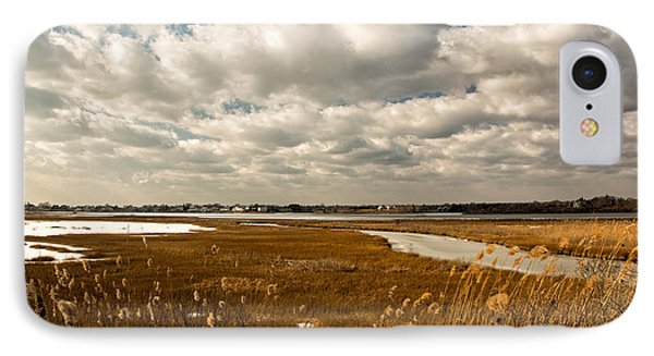 Rhode Island Marshes 1 IPhone Case