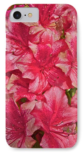 Rhododendron Closeup IPhone Case