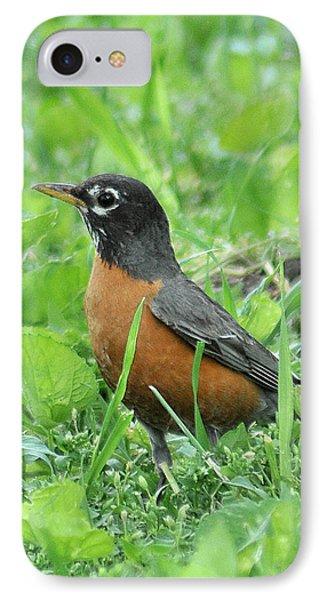 Robin 370 IPhone Case