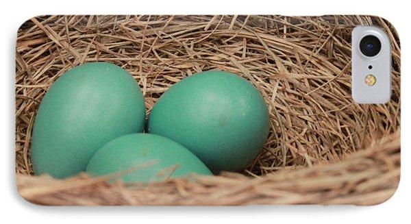 Robins Three Blue Eggs IPhone Case