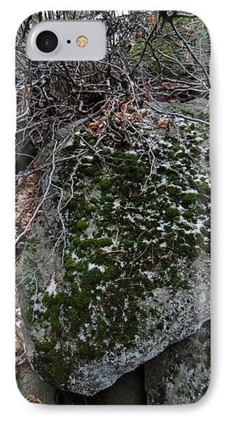 Rock With Lichen And Snow IPhone Case