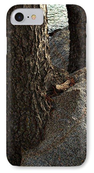 Rockin Tree IPhone Case