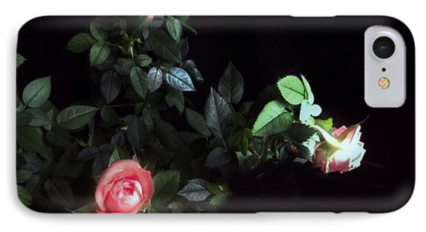 Romance Of The Roses IPhone Case