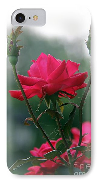 Rose In The Fogg IPhone Case