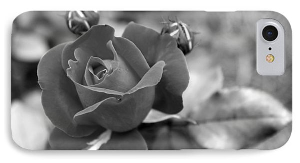 Rose Of Grace IPhone Case