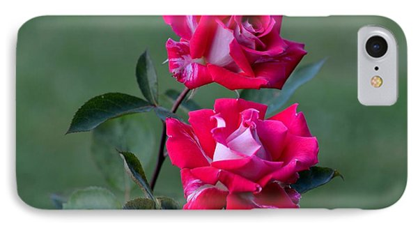 Roses Are... IPhone Case