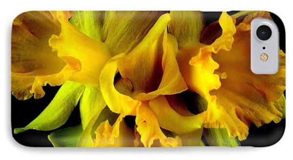 Ruffled Daffodils IPhone Case