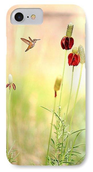 Rufous Hummingbird Mexican Hat Corn Flower IPhone Case