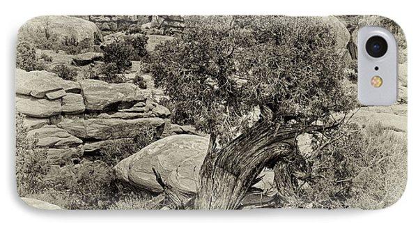 Rugged Tree IPhone Case