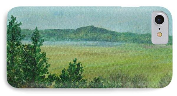 Rural Landscape Art Original Colorful Oil Painting Swan Lake Oregon  IPhone Case