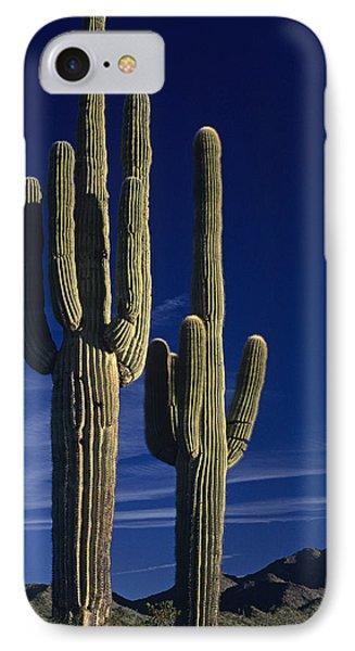 Saguaro Cactus Sunset Arizona State Usa IPhone Case