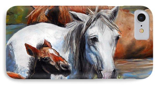 Salt River Foal IPhone Case
