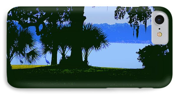 Sand Hill Cranes On Shore IPhone Case