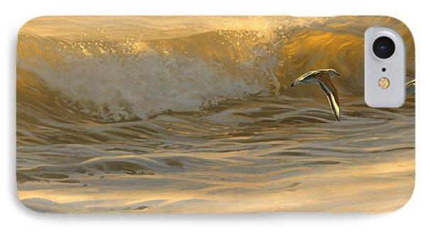 Sanderlings IPhone Case
