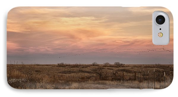 Sandhill Cranes At Sunset IPhone Case