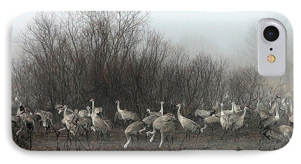 Sandhill Cranes In The Fog IPhone Case