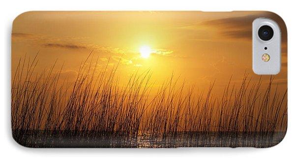 Sarasota Sunset's IPhone Case