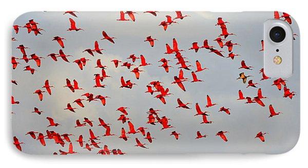Scarlet Sky IPhone Case