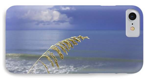 Sea Oats Ahead Of The Storm IPhone Case