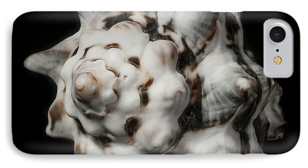 Sea Shell #2 IPhone Case