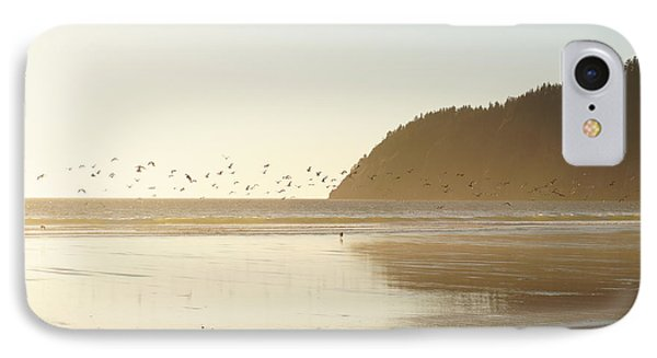 Seagulls Aplenty IPhone Case