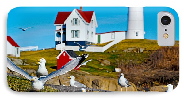 Seagulls At Nubble Lighthouse, Cape IPhone Case