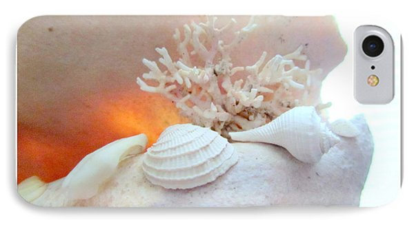 Seashells Study 3 IPhone Case