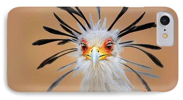 England iPhone 8 Case - Secretary Bird Portrait Close-up Head Shot by Johan Swanepoel