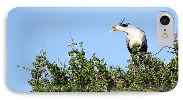 Secretary Bird Stretch IPhone Case