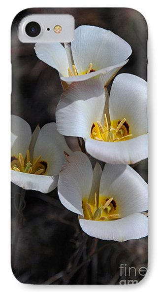 Sego Lily IPhone Case