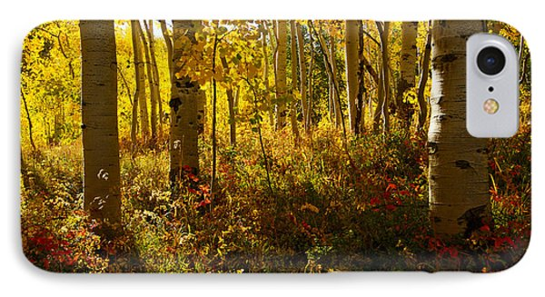 September Scene IPhone Case