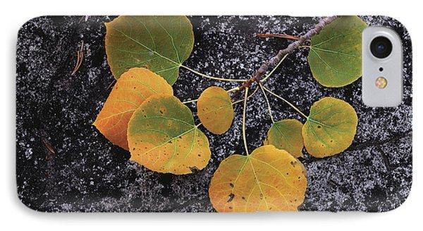 Shades Of Autumn IPhone Case
