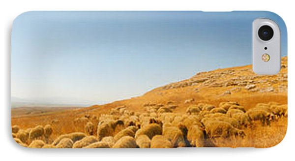 Shepherd Standing With Flock Of Sheep IPhone Case