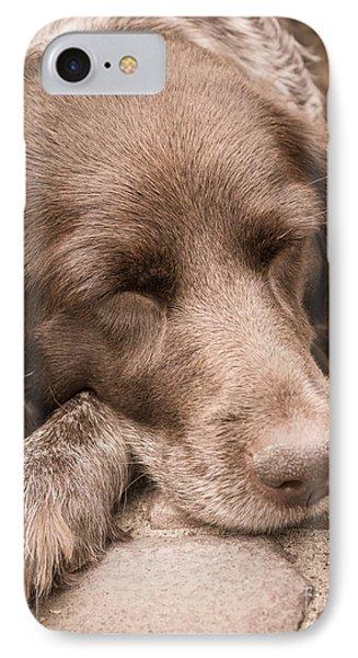 Shishka Dog Dreaming The Day Away IPhone Case