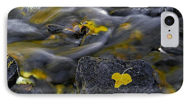Sierra Stream IPhone Case