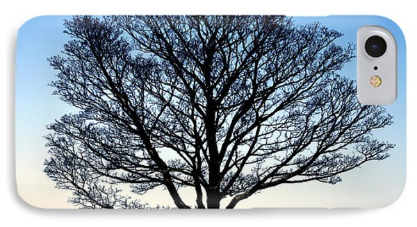 Silhouetted Tree IPhone Case