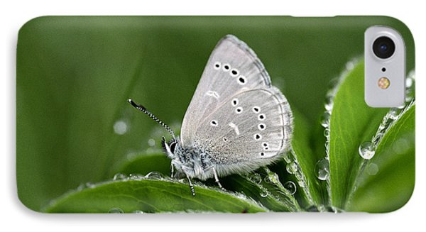 Silver Butterfly IPhone Case