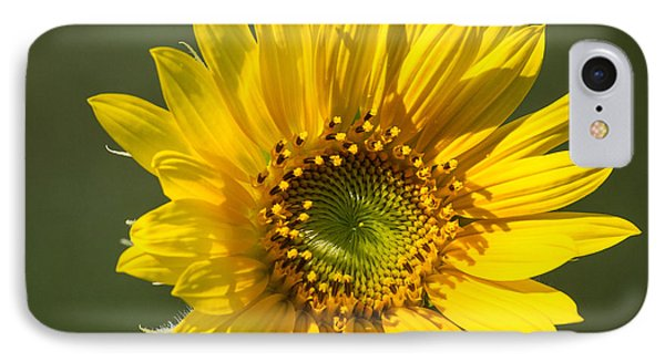 Simple Sunflower IPhone Case
