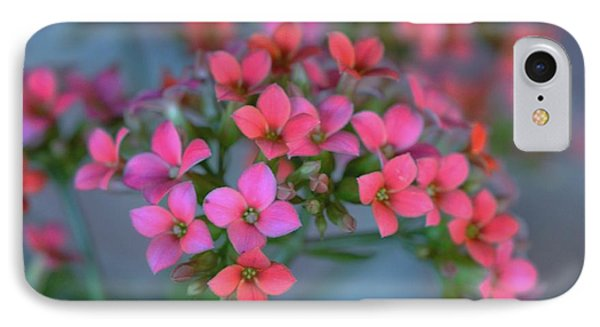 Simply Kalanchoe IPhone Case