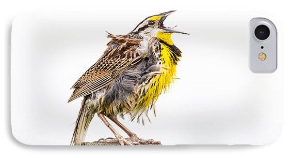 Singing Meadowlark 3rd Of 3 IPhone Case