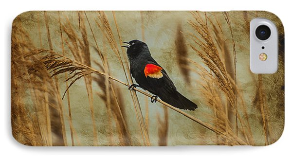 Singing Red Wing IPhone Case