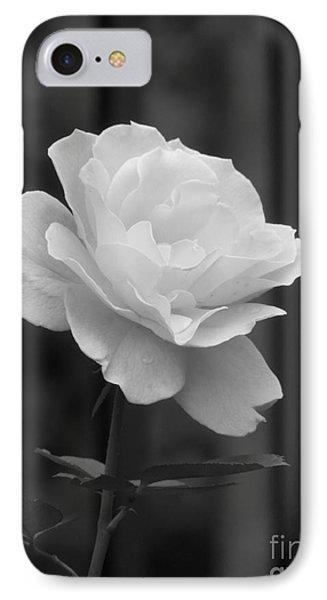 Single White Rose IPhone Case