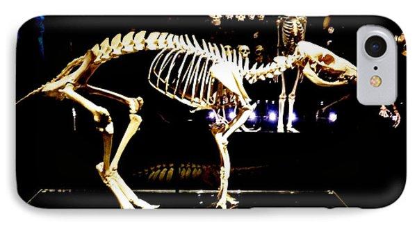 Skeleton 340 IPhone Case