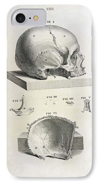 Skull Suture Iphone 8 Cases Fine Art America