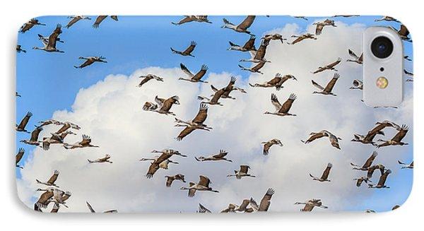 Skyful Of Cranes IPhone Case